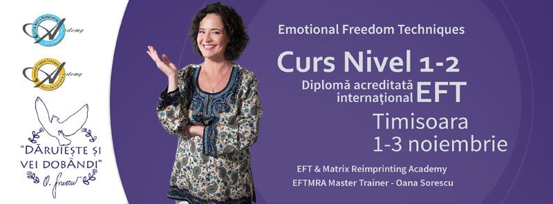 Cur EFT Timisoara - Nivel 1-2