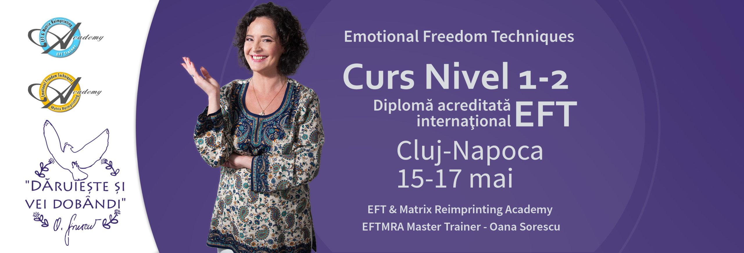 Curs EFT Cluj-Napoca