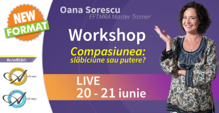 workshop-vizual-mic