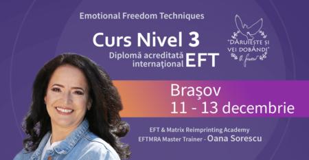 Cover-mic-Curs-EFT-3-11-13-dec-Brasov