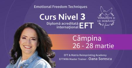 Cover-mic-Curs-EFT-3-26-28-martie-Campina