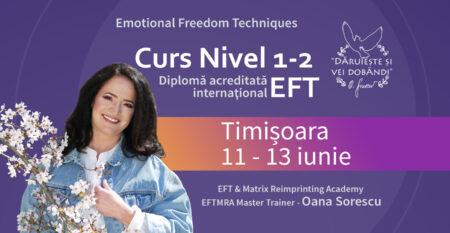 Cover-mic-Curs-EFT-1-2_11-13-iunie-Timisoara