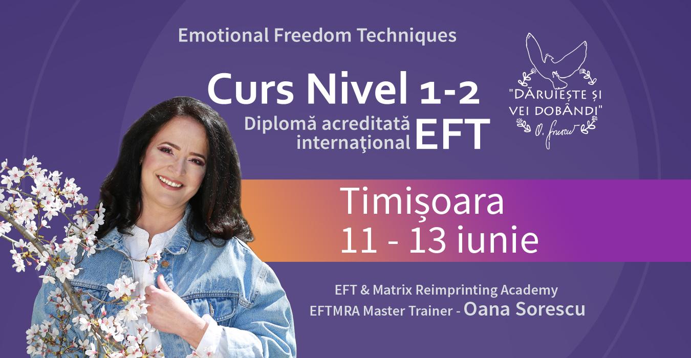 curs EFT 1 2 Timisoara 2021 11-13 iunie