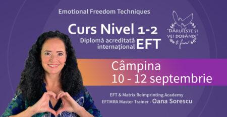 Cover-mic-Curs-EFT-1-2_10-12-sept-Campina