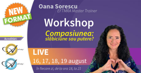 workshop-vizual-mic